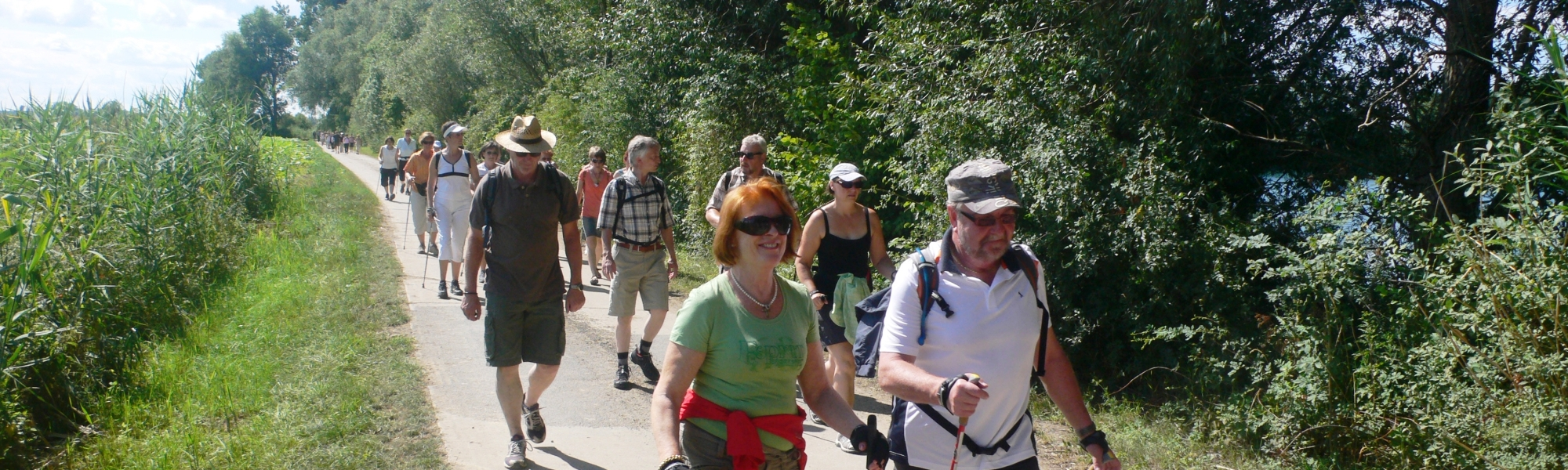 Nordic Walking in den Wiesen